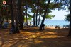 Rovinj Centener Cuvi Dock chairs under the trees